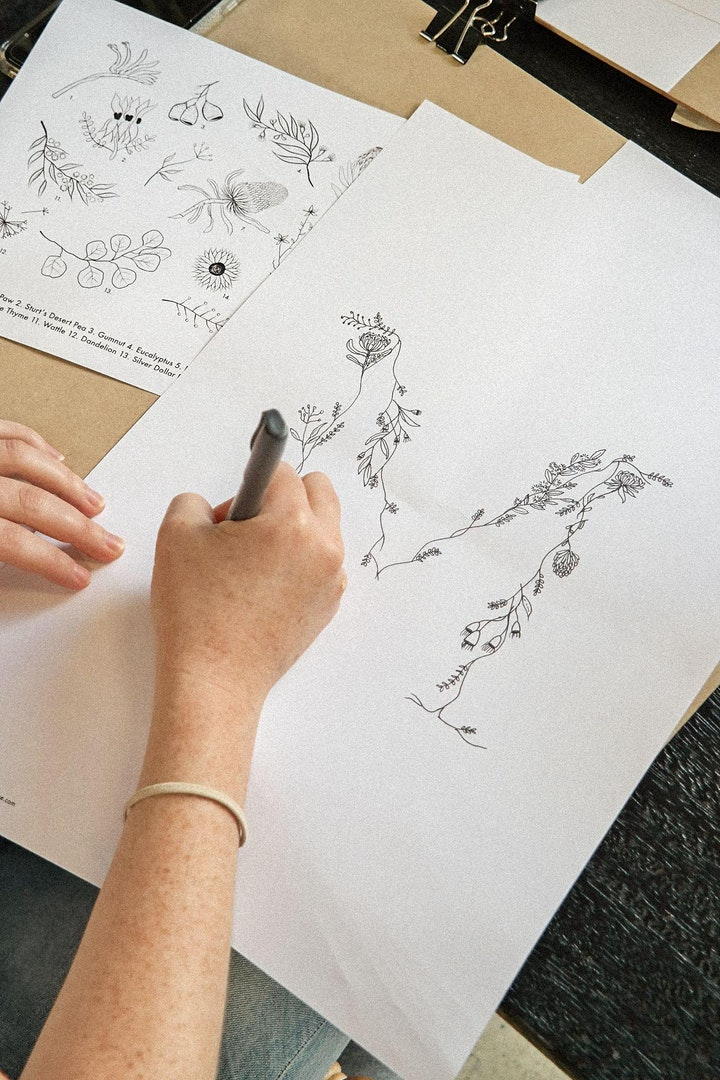 Fine Line Botanical Workshop - Native Flora image