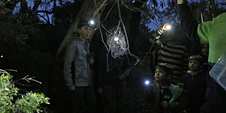 Fully booked - Southern Parklands Nature by Night tickets