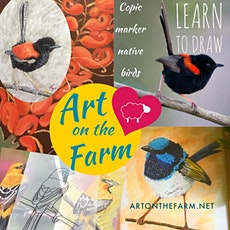 Draw and Paint Birds tickets