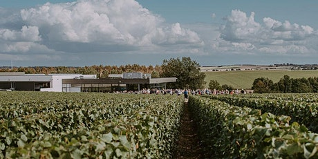 Rentrée des Dames au Chant d'Eole : les vignes au service de la beauté billets