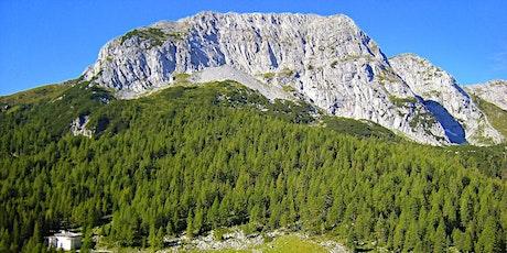 Trekking nelle verdi montagne della Carnia: CASON di LANZA e la VAL DOLCE biglietti