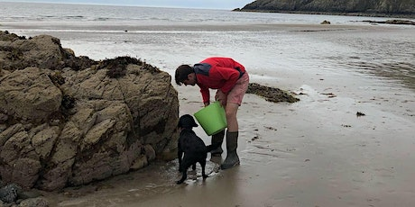 Introduction to Coastal Foraging - Foraging Workshop and Walk at Conwy tickets