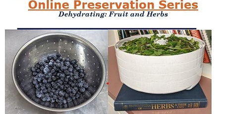 Preserving through Dehydrating tickets