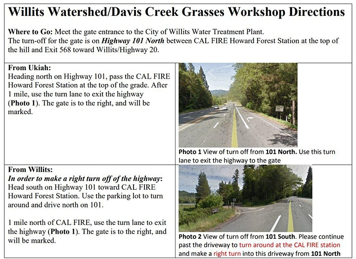 Intro Native Grasses-Ecology, Fire and Climate Resilience Willits Watershed image