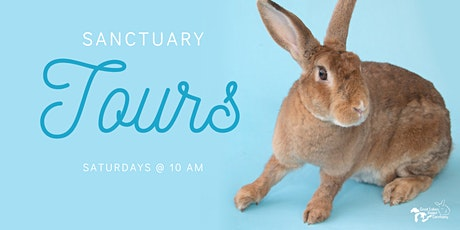 Meet the Animals- Saturday Tours at Great Lakes Rabbit Sanctuary! tickets