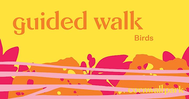 Guided Walk:  Bird image