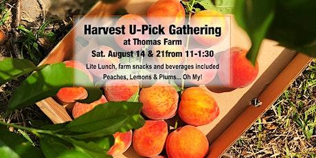 Peach, Plum & Lemon U-Pick at Thomas Farm tickets