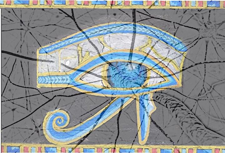 """Image pour Workshop """"Mouvements des yeux et activité cérébrale"""""""