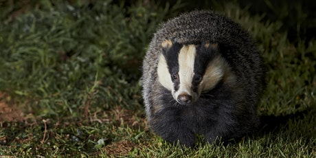 Wildlife Watch Club - Fantastic Creatures and Where to Find Them tickets