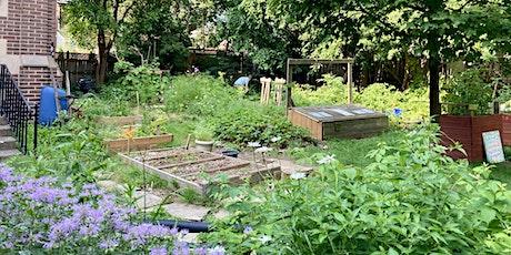 End-of-Summer Gardening 101 tickets