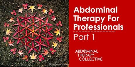 Abdominal Therapy for Professionals Part 1- ATP1- Slovenia biglietti