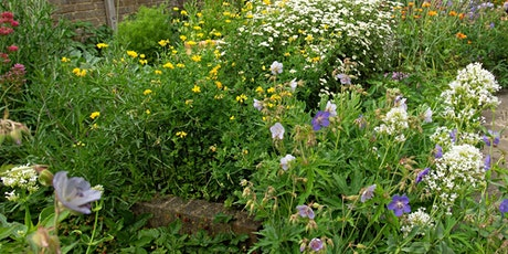 """Using """"weeds"""" and wildflowers in a traditional garden setting tickets"""