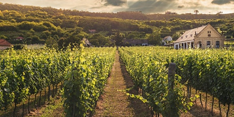 Exploring the Wines of Spain tickets