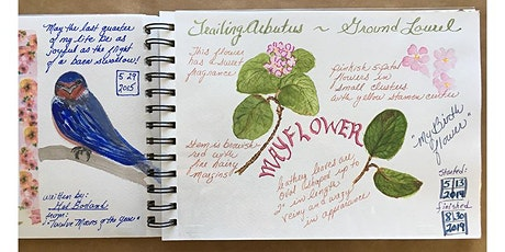 Nature Journaling Class (3 Saturday Classes) tickets