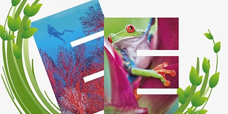 #TropiCon21: Twitter conference of Conservation and Tropical Ecology SIGs tickets
