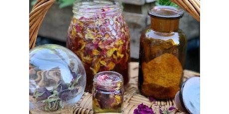 Potion & Elixir Workshop with Launette tickets