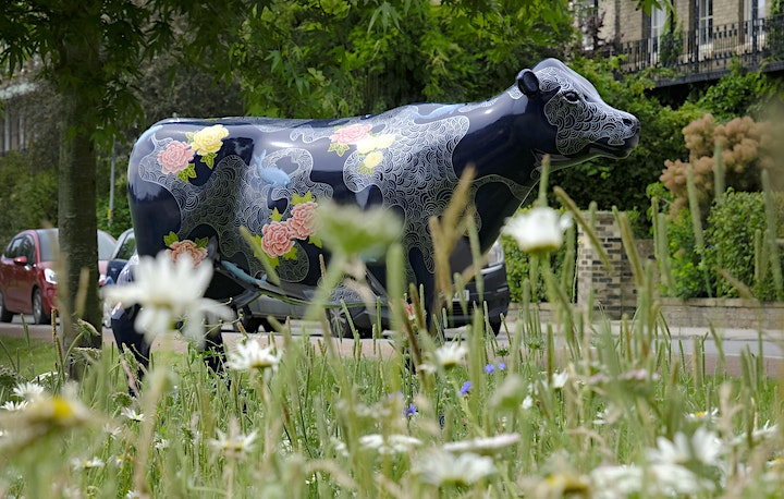 Cows about Cambridge Farewell Weekend image
