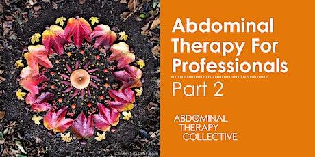 Abdominal Therapy for Professionals Part 2- ATP2 in Slovenia biglietti