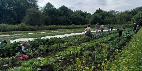 LWA meetup at Living Potential Care Farming tickets