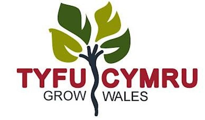 Tyfu Cymru Nut Network Study Trip  - Warwickshire Walnuts image