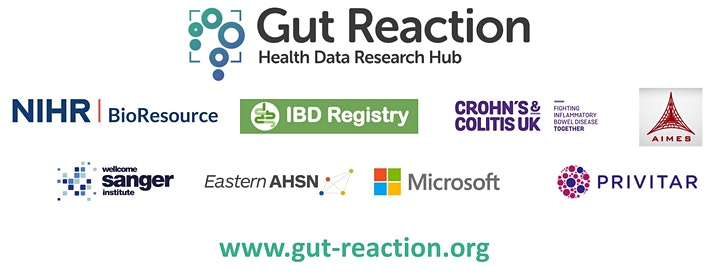 Gut Reaction, the Health Data Research Hub for IBD - SME workshop image