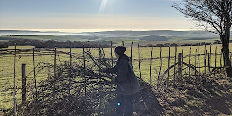 South Downs Youth Action - Hedge laying for Restoring Hampshire Hedgerows tickets