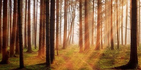 Sustainable Woodland Management tickets