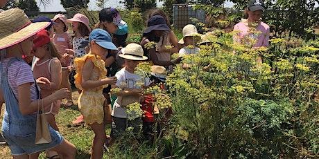 FARM KIDS SCHOOL HOLIDAYS - Bees Workshop tickets