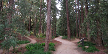 UC Davis Redwood SEED Scholars Info Session tickets