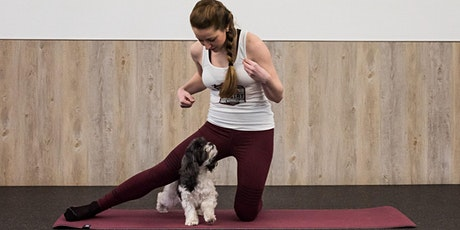 Dog Yoga (6-weeks Online Classes) tickets