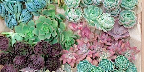 Succulent Living Wreath tickets
