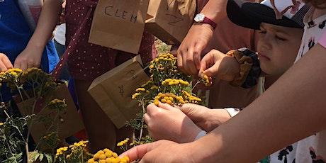 FARM KIDS SCHOOL HOLIDAYS - Medicinal Herbs Workshop tickets