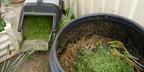 Webinar - Worm farming and composting - November 2021 tickets
