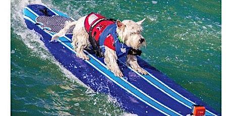 World Dog Surfing Competition Livestreamed: 2021 Dog Registration Entry tickets