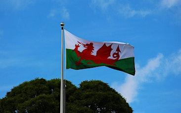 Understanding and influencing Welsh legislation tickets