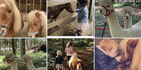 Childrens Parties - Fun on the Farm at Summer Barn - Private Hire 2022 tickets