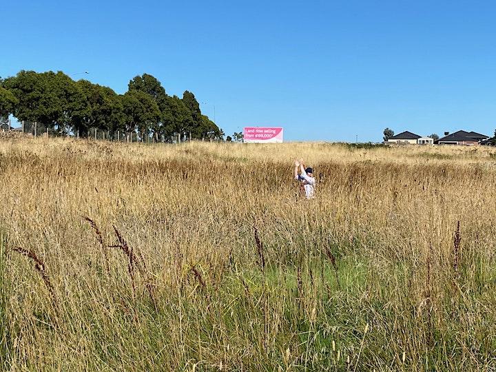 Latham's Snipe Sep Community Survey - Craigieburn image