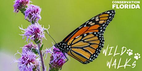 Wild Walks: Wildflowers at D Ranch Preserve tickets