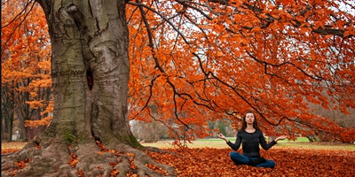 Welcoming the Fall Season with Yin Yoga (online workshop)