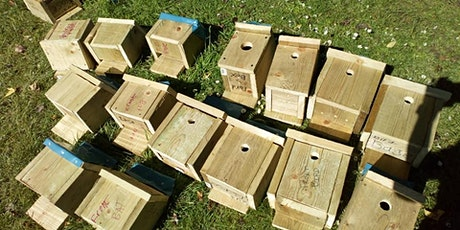 Ham Lands Community day- Making Bird Boxes and Insect hotels PM slot tickets