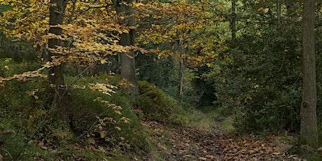Autumn treasure tickets