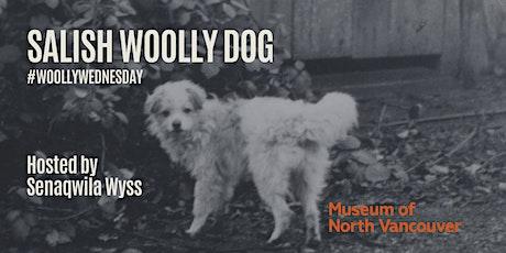 #WoollyWednesday with Senaqwila Wyss tickets