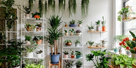 Indoor Plant Care tickets