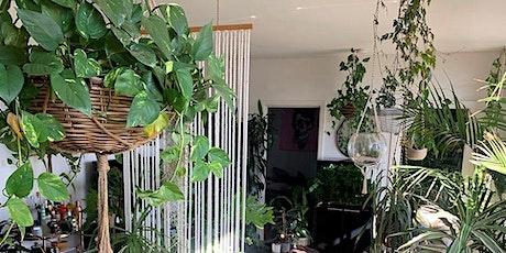 Indoor plant workshop with Markus Hamence tickets
