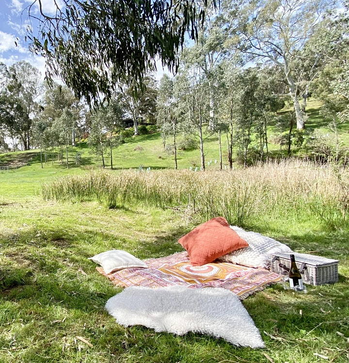 Picnic with Bubbles and Bandicoots image