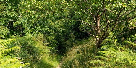Borders Forest Trust - 25th Anniversary Conference tickets
