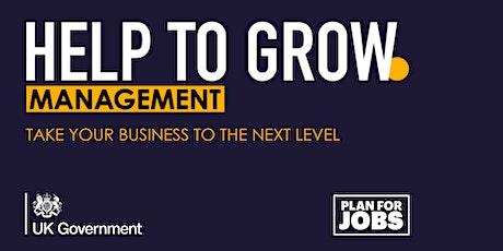 Q&A: Help to Grow Management Programme tickets