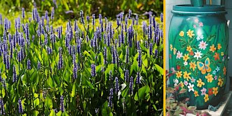 Water-Wise Workshop: Wetland Wildflowers & Rainwater Harvesting tickets