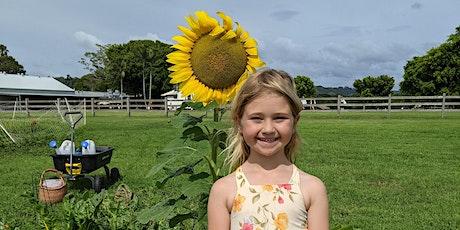 FARM KIDS - Mini Farmers Term 4 (The Sun) tickets