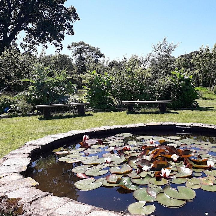 The Semibreve Collective Secret Garden Concert at The Peace Garden image
